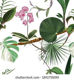 Exotic seamless pattern. Phalaenopsis variegata orchid tropical flowers in summer print. Hawaiian t-shirt and swimwear tile. Hypernatural botanic design.
