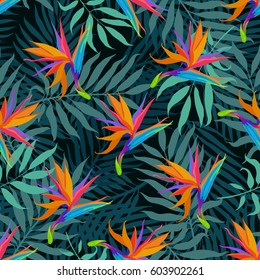 Exotic seamless vector pattern with paradise bird flowers and palms, tropical illustration, amazing details layout with botanical flowers.