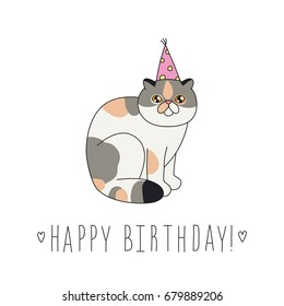 Exotic Short Hair Cat In A Festive Cap Happy Birthday Doodle Greeting Card