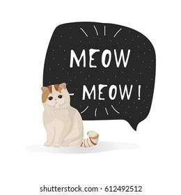 Exotic shorthair cat breed vector illustration isolated