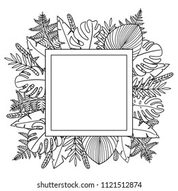 Exotic template with square shape and  leaves fern, monstera, palm. Tropical decoration elegant elements. Can use as greeting, invitation card. Botanical illustration