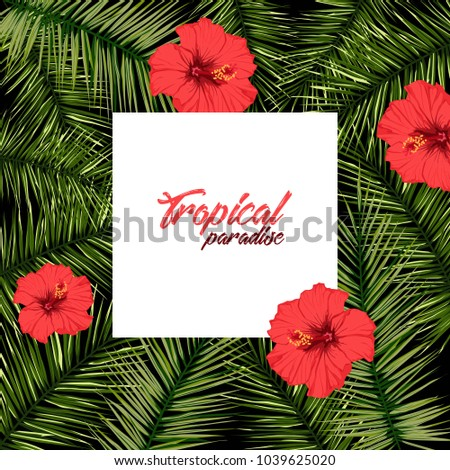Exotic Tropic Landscape Border Frame Template Stock Vector Royalty