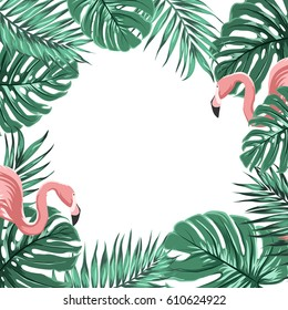 exotic tropical border frame template 260nw 610624922