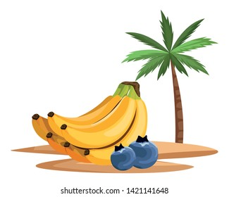 exotic tropical fruit with bluberries and banana cluster icon cartoon over sand with palm background vector illustration graphic design