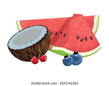 exotic tropical fruit with bluberries, watermelon, coconut and cherries icon cartoon vector illustration graphic design