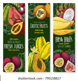 Exotic tropical fruits banners for farm market or fresh juice. Vector sketch mango, guava or durian and mangosteen, tropic papaya and juicy rambutan or dragon fruit pithaya, feijoa or lychee fruit