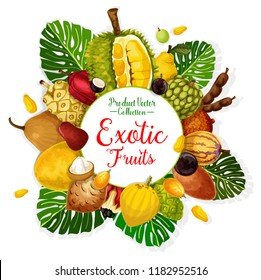 Exotic tropical fruits poster. Durian, pomelo and quince, cherimoya, tamarind and apple cashew, pepino, jabuticaba and gandaria, ackee, cocona and salak with palm leaf