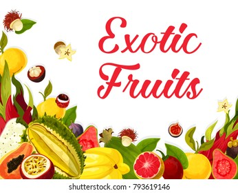 Exotic tropical fruits poster of guava, figs or orange and lichee, carambola starfruit or maracuya passion fruit. Vector tropic fruit harvest of and papaya and dragon fruit with mango for market shop