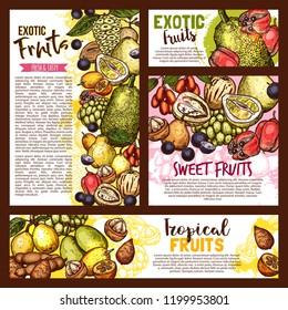 Exotic tropical fruits sketch, farm market. Vector tasty salak, jujube, sapodilla and ackee apple, ambarella or tamarind and jabuticaba, pepino fruit and jackfruit, kumquat
