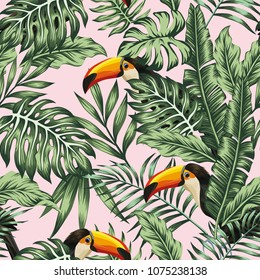 Exotic tropical green jungle palm, monstera leaves with trendy bird toucan pink background. Vector seamless pattern composition