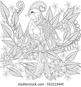Exotic tropical zentangle bird sitting on branch with flowers for adult anti stress coloring page, greeting card, decoration element. Hand drawn patterned illustration for St Valentine day, spring