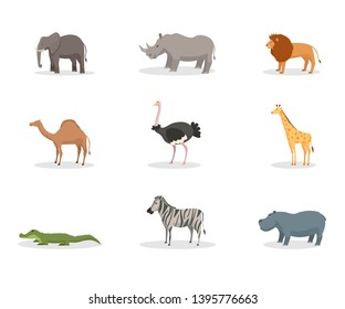 Exotic wild animals flat vector illustration set. African jungle fauna, species diversity. Tropical nature reserve, zoo, wildlife sanctuary. Elephant, rhino mammals. Safari, zoology. Lion, crocodile