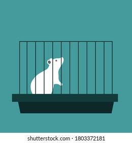 experimental laboratory white mouse in a cage. flat vector illustration on blue background