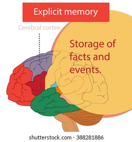 The Explicit memory.