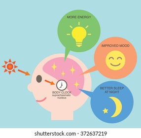 exposure to sunlight regulate our body clock and increase serotonin which keeps us  happy, waking, and night's sleep/health benefit of sunlight diagram of circadian rhythm/health benefit of sunlight