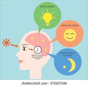 exposure to sunlight regulate our body clock and increase the serotonin which keeps us in a good mood, awaking, and night's sleep/health benefit of sunlight