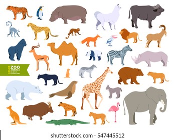 Extra big set zoo animals realistic flat cartoon design style. Lama, bull, buffalo, pelican, goat, antelope, gopher, polar bear, panther, fur seal, lemur, lynx, yak, hyena, flamingo, cheetah, walrus.