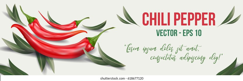 Extra spicy chili pepper with olive leaves. Template banner for restaurant, cafe, bar or fast food poster,  flyer or brochure. Mexican restaurant poster, food brochure or menu template.