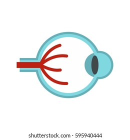 Eye anatomy icon in flat style isolated on white background vector illustration