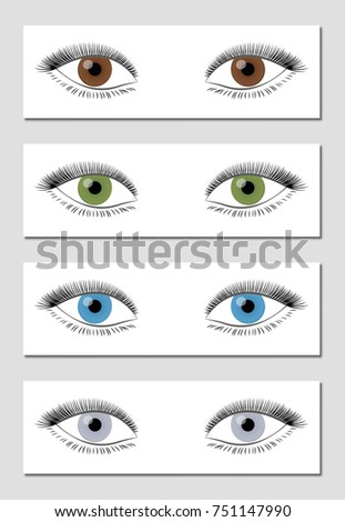 Eye Color Chart Dominant Order Occurrence Stock Vector Royalty Free