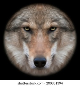 Eye contact with a severe wolf female through the lens. Menacing expression of the european wolf, very beautiful animal and extremely dangerous beast. Amazing vector image in oil painting style.