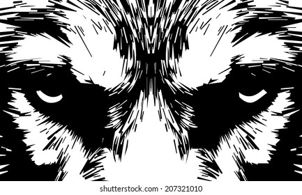 Eye contact with severe wolf. Menacing expression and awful charm of the wolf, beautiful animal and dangerous beast. Amazing black and white vector image. Great for user pic, icon, label or tattoo.