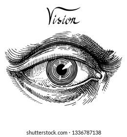 Eye. Eye hand drawn vintage style engraving. Classic vintage style image. Hand drawn illustration for tattoo design, emblem, badge, t-shirt print. Eye icon. Vector illustration