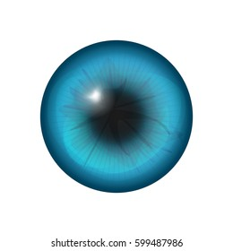 eye iris close up isolated in white. vector illustration