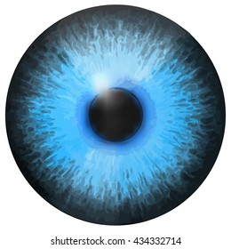 Eye iris vector painted texture