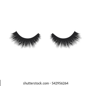 Eye lashes vector icon. Lashes vector