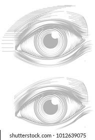 Eye line drawing vector illustration
