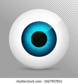 Eye. Realistic 3d eyeball vector illustration. Real human iris,pupil and eye sphere. Icon on transparent background. Isolated macro color eyeball. Character eyes design. Circle anatomy close up
