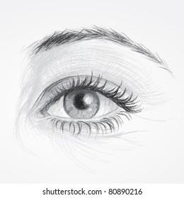 EYE / Realistic sketch of beautiful woman eye