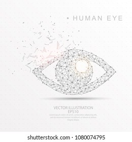 Eye shape point, line and composition digitally drawn in the form of broken a part triangle shape and scattered dots low poly wire frame on white background.