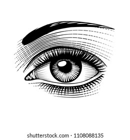 Eye of woman. Vintage engraving stylized drawing. Vector illustration