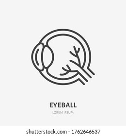 Eyeball line icon, vector pictogram of human organ. Eye orb illustration, sign for ophthalmology clinic.