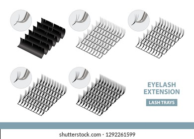 Eyelash Extension Application Tools and Supplies. Volume Artificial Lashes Set. Vector Illustration. Template for Makeup and Cosmetic Procedures in beauty salon. Training poster. Guide