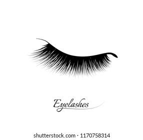 Eyelash extension. Beautiful black long eyelashes. Closed eye . False beauty cilia. Mascara natural effect. Professional glamor makeup.