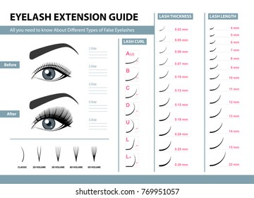 Eyelash extension guide. Different Types of False Eyelashes. Infographic vector illustration. Template for Makeup and cosmetic procedures. Training poster