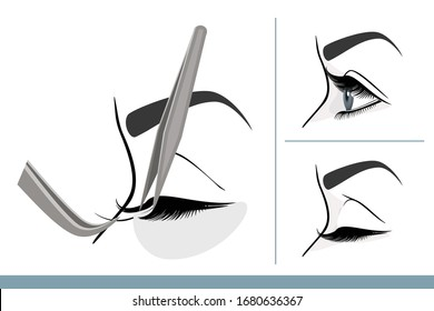 Eyelash Extension Procedure. Female Eye with Long Thick Eyelashes. Side View. Macro, Selective Focus. Guide. Infographic Vector Illustration