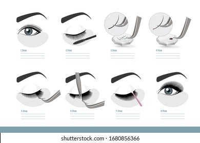 Eyelash Extension Procedure. How to Apply Eyelash Extensions Step by Step. Full Tutorial on Application. Guide. Infographic Vector Illustration