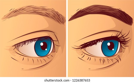 Eyelashes and eyebrow, before-after. Vector illustration.
