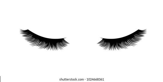 Eyelashes vector illustration