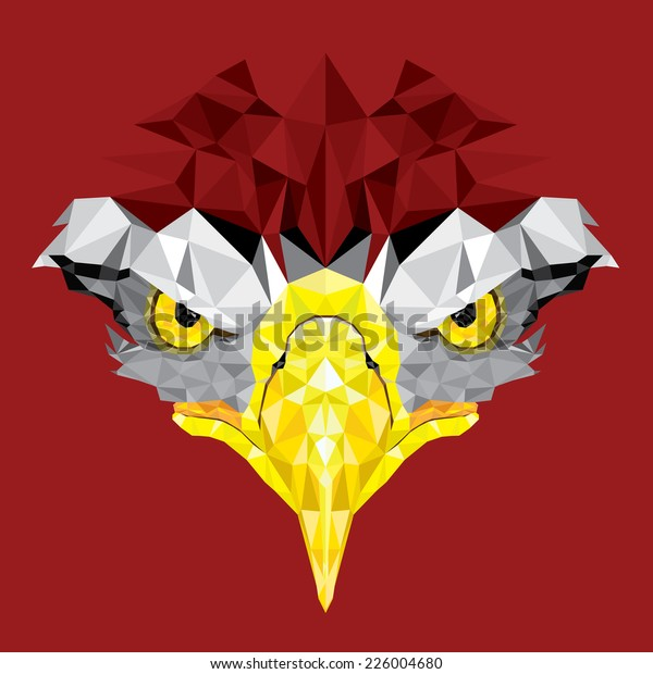 Eyes of Eagle with geometric pattern vector