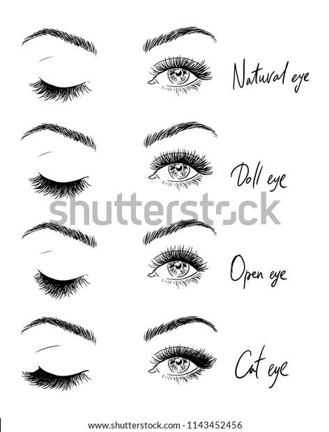 7a4759bd62a Eyes Eyelashes Types Eyelash Extensions Stock Vector (Royalty Free ...