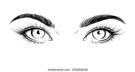 Eyes looking straight. Sexy look. Fashion illustration. Eye with eyebrows and long eyelashes. Vector EPS 10.