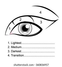 Eyeshadow Guides
