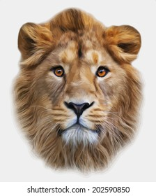 The face of an Asian lion, isolated on white background. The King of beasts, biggest cat, looking straight into the camera. The most dangerous predator. Amazing vector image in oil painting style.