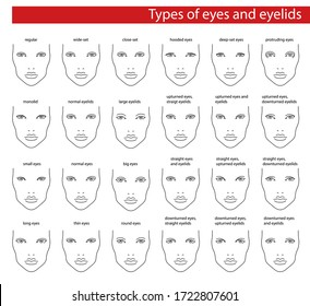 Face chart for makeup of european woman for different eyes