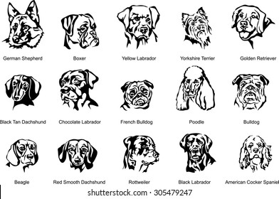 The face of a dog, breed dog, vector the image of a dog face, dog, portrait. Black silhouette of dog. Vector illustration.